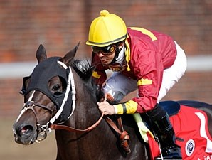 Big Drama wins the 2010 Breeders' Cup Sprint.