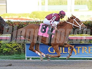 Lil Red Cozette - AOC March 7, 2014 Gulfstream Park.