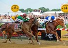"Preakness winner Shackleford<br><a target=""blank"" href=""http://www.bloodhorse.com/horse-racing/photo-store?ref=http%3A%2F%2Fpictopia.com%2Fperl%2Fgal%3Fprovider_id%3D368%26ptp_photo_id%3D9533516%26ref%3Dstory"">Order This Photo</a>"