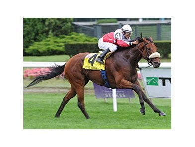 "Miss World looks to return to her 2009 form in the Suwannee River Stakes.<br><a target=""blank"" href=""http://www.bloodhorse.com/horse-racing/photo-store?ref=http%3A%2F%2Fpictopia.com%2Fperl%2Fgal%3Fprovider_id%3D368%26ptp_photo_id%3D8476178%26ref%3Dstory"">Order This Photo</a>"