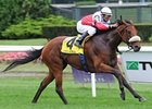 "Miss World comes home strong to upset the Garden City.<br><a target=""blank"" href=""http://www.bloodhorse.com/horse-racing/photo-store?ref=http%3A%2F%2Fpictopia.com%2Fperl%2Fgal%3Fprovider_id%3D368%26ptp_photo_id%3D8476178%26ref%3Dstory"">Order This Photo</a>"