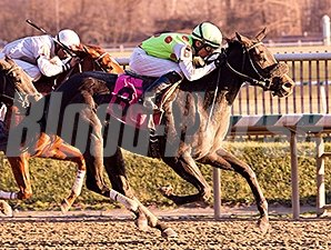 Spotted Heart wins the 2014 Maryland Juvenile Filly Championship Stakes.