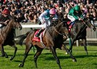 "Twice Over repeats in the Champion Stakes under Tom Queally. <br><a target=""blank"" href=""http://www.bloodhorse.com/horse-racing/photo-store?ref=http%3A%2F%2Fpictopia.com%2Fperl%2Fgal%3Fprovider_id%3D368%26ptp_photo_id%3D9235135%26ref%3Dstory"">Order This Photo</a>"