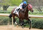 Alternation won the 2012 Razorback Handicap.