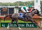 Informed Decision, who won last year's Chicago Handicap, will defend her title in 2010.