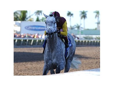 Awesome Maria