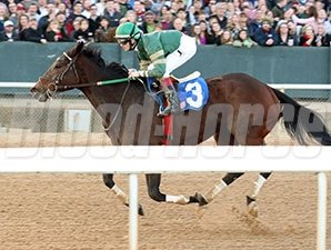 Don't Tell Sophia wins the 2014 Pippin Stakes.