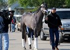 Monba arrives at Churchill Downs on April 30.