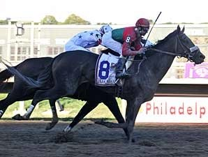 Zito Duo Head Meadowlands Cup