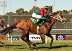 Jeranimo won the 2012 Shoemaker Mile.