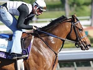 On to Kentucky Derby With Noble's Promise