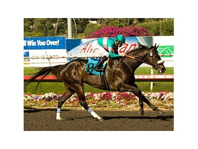"Zenyatta will try to extend her unbeaten streak in the Vanity.<br><a target=""blank"" href=""http://www.bloodhorse.com/horse-racing/photo-store?ref=http%3A%2F%2Fpictopia.com%2Fperl%2Fgal%3Fprovider_id%3D368%26ptp_photo_id%3D8148335%26ref%3Dstory"">Order This Photo</a>"