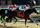 "Amazombie has been entered in the Palos Verdes Stakes, but may not run if there is rain.<br><a target=""blank"" href=""http://www.bloodhorse.com/horse-racing/photo-store?ref=http%3A%2F%2Fpictopia.com%2Fperl%2Fgal%3Fprovider_id%3D368%26ptp_photo_id%3D9757101%26ref%3Dstory"">Order This Photo</a>"
