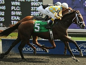Dynamic Sky wins the 2012 Simcoe Stakes.