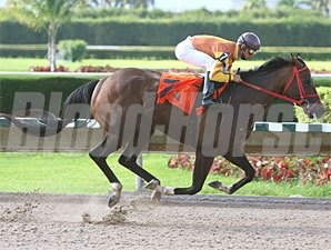 Pica Slew wins the 2010 Leave Me Alone Stakes.