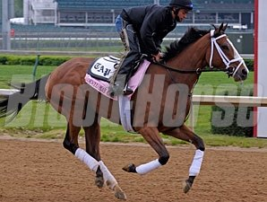 Devil May Care at Churchill Downs on April 22, 2010.