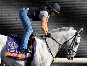 California Flag - Breeders' Cup 2012