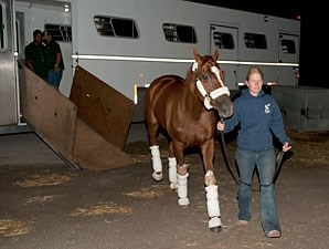 Wise Dan - Woodbine, September 13, 2013
