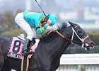 "Gotham winner I Want Revenge heads the probable list for the Wood on April 4.<br><a target=""blank"" href=""http://www.bloodhorse.com/horse-racing/photo-store?ref=http%3A%2F%2Fpictopia.com%2Fperl%2Fgal%3Fprovider_id%3D368%26ptp_photo_id%3D7872257%26ref%3Dstory"">Order This Photo</a>"