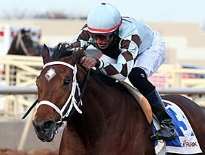 Unusual Way wins the 2013 Zia Park Oaks.