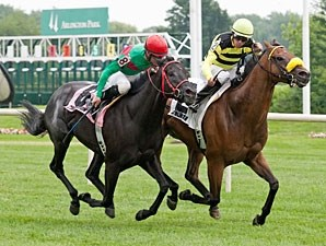 Saint Leon wins the 2013 Arlington Sprint.