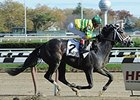 Blofeld will make his 2015 debut in the William Walker Stakes.