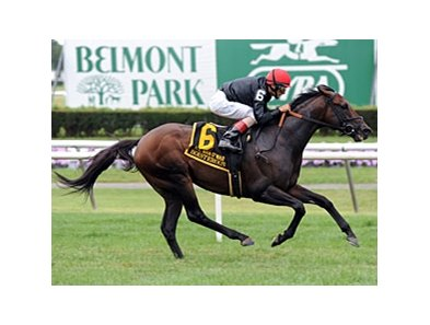 "Boisterous won the Man o' War Stakes on July 13.<br><a target=""blank"" href=""http://photos.bloodhorse.com/AtTheRaces-1/at-the-races-2013/27257665_QgCqdh#!i=2632899647&k=LJQHPN9"">Order This Photo</a>"