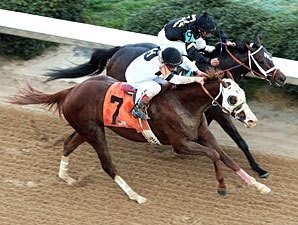 Will Take Charge, Oxbow Going Separate Ways