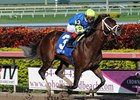 "Thunder Moccasin streaks home in the Hutcheson Stakes at Gulfstream Park.<br><a target=""blank"" href=""http://www.bloodhorse.com/horse-racing/photo-store?ref=http%3A%2F%2Fpictopia.com%2Fperl%2Fgal%3Fprovider_id%3D368%26ptp_photo_id%3D9812054%26ref%3Dstory"">Order This Photo</a>"