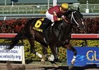 "Big Drama comes home strong to win the Mr. Prospector.<br><a target=""blank"" href=""http://www.bloodhorse.com/horse-racing/photo-store?ref=http%3A%2F%2Fpictopia.com%2Fperl%2Fgal%3Fprovider_id%3D368%26ptp_photo_id%3D9372179%26ref%3Dstory"">Order This Photo</a>"