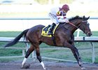 "Royal Delta faces four in the Personal Ensign. <br><a target=""blank"" href=""http://photos.bloodhorse.com/AtTheRaces-1/at-the-races-2013/27257665_QgCqdh#!i=2369612231&k=7D6gbrM"">Order This Photo</a>"