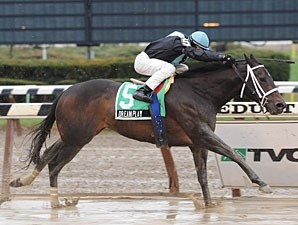 Dream Play wins the 2009 Comely.