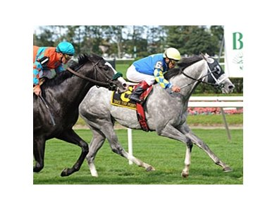 "Take the Points powers home in the Jamaica.<br><a target=""blank"" href=""http://www.bloodhorse.com/horse-racing/photo-store?ref=http%3A%2F%2Fpictopia.com%2Fperl%2Fgal%3Fprovider_id%3D368%26ptp_photo_id%3D8546259%26ref%3Dstory"">Order This Photo</a>"