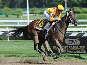 My Miss Aurelia wins the 2012 Mandys Gold.