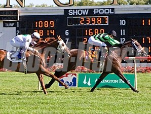 Cumulonimble wins the 2010 Lincoln Heritage.