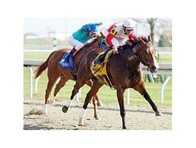 Carriage Trail holds off Say You Will to take the Doubledogdare at Keeneland.