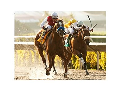 Euroears wins the Bing Crosby Stakes.