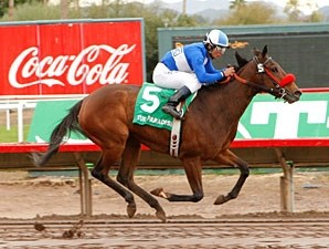Tornado Betty wins the 2010 Arizona Oaks.
