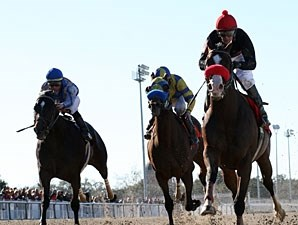 Recapturetheglory wins the 2011 Louisiana Handicap.