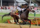 Oxbow in the Preakness Stakes.