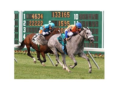 Silver Screamer comes home strong to win the Eatontown Stakes at Monmouth.
