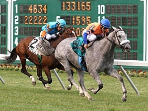 Silver Screamer wins the 2012 Eatontown Stakes.