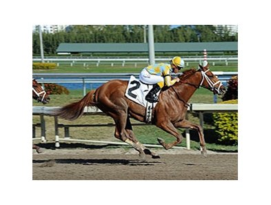 Stealcase is one of 2 entered by trainer Mark Casse and owner John Oxley in the Ontario Derby.