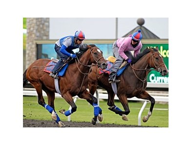 "Went the Day Well (left) worked five furlongs in 1:02 on April 14 at Keeneland. <br><a target=""blank"" href=""http://photos.bloodhorse.com/AtTheRaces-1/at-the-races-2012/22274956_jFd5jM#!i=1793990242&k=VrvpNxB"">Order This Photo</a>"