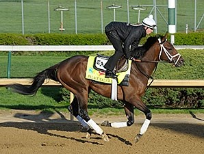 Palace Malice works at Churchill Downs 4/21/2013.