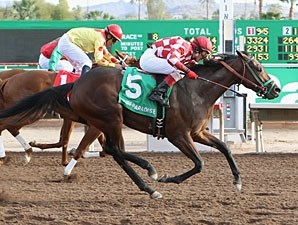 Glenco Kid wins the 2012 Lost in the Fog Juvenile Stakes.