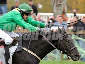 Black Jack Blues wins the 2011 Grand National Steeplechase.