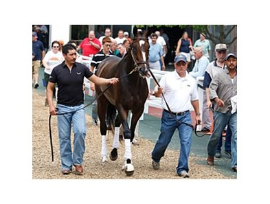 Assistant trainer Scott Blasi (right) escorts Rachel Alexandra, as she schools at Monmouth on July 23.
