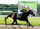 Slideshow: Palace Malice's Belmont Stakes