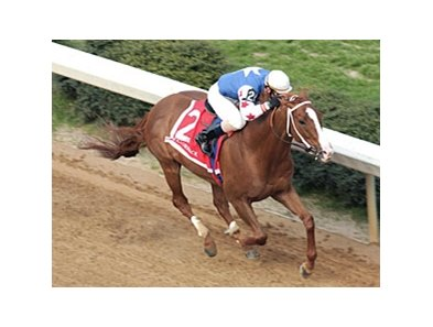"Jonesboro powers to victory in the Razorback.<br><a target=""blank"" href=""http://www.bloodhorse.com/horse-racing/photo-store?ref=http%3A%2F%2Fpictopia.com%2Fperl%2Fgal%3Fprovider_id%3D368%26ptp_photo_id%3D3811556%26ref%3Dstory"">Order This Photo</a>"